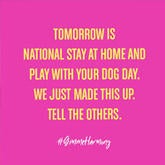 stay at home with dog day